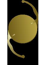 monofocal-toric