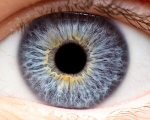 Eye Image for Berks Eye Posterior Vitreous Detachment Page